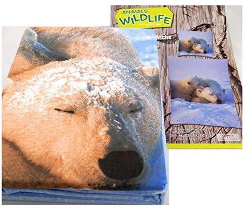 Bettwäsche Eisbären Animals Wildlife Bezug 135x200cm Kissen 80x80cm 100%Baumwolle
