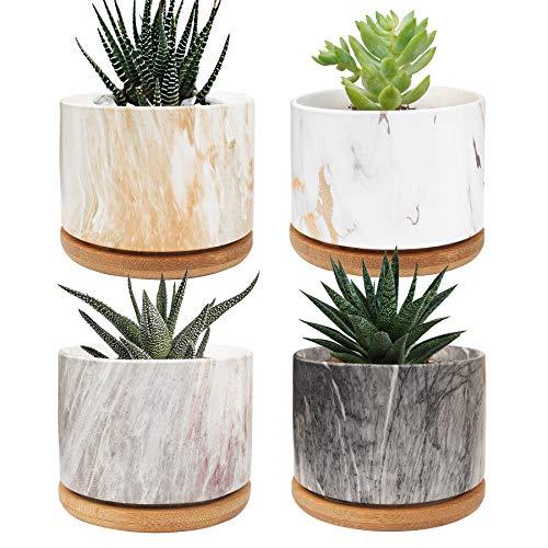 Macetas de 9 cm para plantas suculentas, pequeñas macetas, con cuenco de bambú