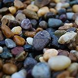 Colección de rocas de playa de Irlanda (20 kg)