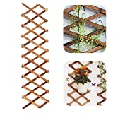 Iceyyyy Wood Lattice Wall Planter - Expandable Hanging Wooden Planter Trellis Frame, Indoor Air Plant Vertical Rack Wall Decor for Room Garden