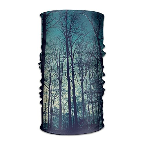 Blue Sky High Trees Headwear Bandanas sin costuras, para deportes al aire libre, tocado para correr, equitación, esquí, senderismo