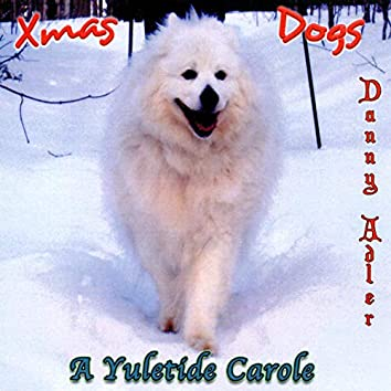 The Danny Adler Holiday Series