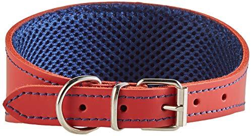 Arppe 195376045103 Collar Galgo Cuero Forro 3D Amazone, Rojo y Azul Marino
