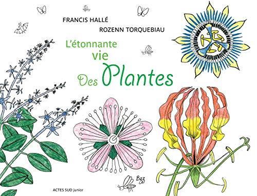 Létonnante vie des plantes