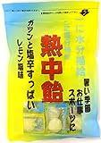 井関食品 熱中飴レモン塩味 100g×10袋