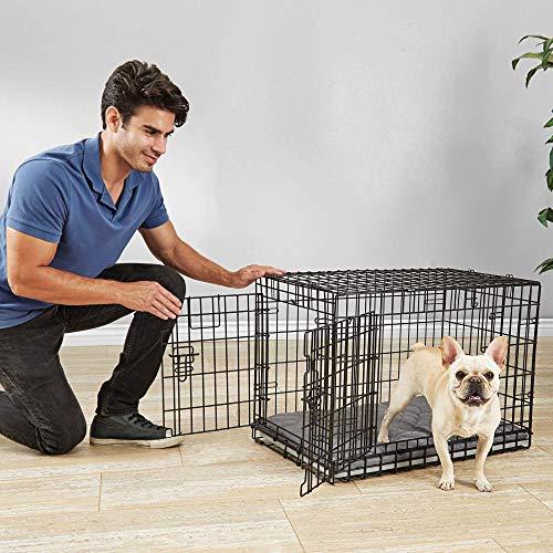 Petco Brand - You & Me Ultra Tough 2-Door Folding Dog Crate, 31' L x 20' W x 22' H, Medium