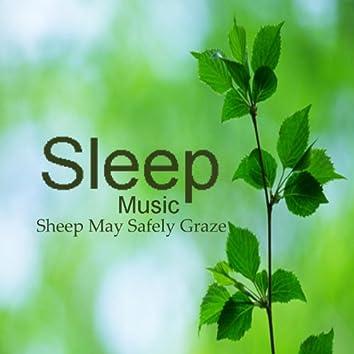 Sleeping Music: Sheep May Safely Graze