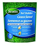 Hot Weather Grass Seed