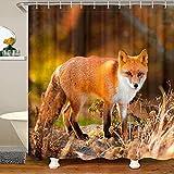 Loussiesd Fox Cortina de ducha impermeable 3D Animal Bath Curtain Woodland Fox Juego de cortina de ducha con 12 ganchos para colocar bañeras decoraciones naranja 12 x 71 pulgadas