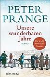 Unsere wunderbaren Jahre: Ein deutsches Märchen. Roman (Fischer Taschenbibliothek)