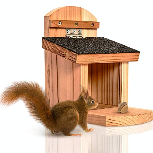 deintierhaus.de© | Eichhörnchen Futterhaus aus robusten Naturholz - fertig montiert & wetterfest - Futterstation zum Aufhängen für Garten & Balkon - Futterautomat, Futterkasten | 23 x 21 x 13 cm