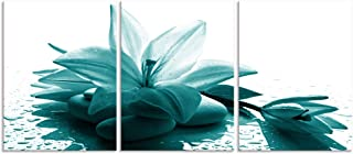 Visual Art Decor 3 Pieces Teal Lily Flowers Zen Stone Canvas Prints Wall Decor Premium Gallery Decor Framed Floral Wall Decoration Ready to Hang for Home Office