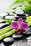 Zen - Stillleben - Orchidee Motivational Lounge Lifestyle