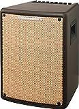 Ibanez Troubadour T80II-U Amplifier Combo for Acoustic Guitar, 80 W