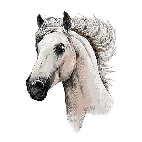 Color Bügeltransfers, DIN A4, filigran ohne Hintergund | Textilien wie T-Shirts & Taschen mit Bügelmotiven verzieren | Bilder schnell & einfach aufbügeln | DIY Textildesign (Pferd)