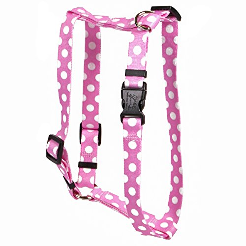 Yellow Dog Design Watermelon Polka Dot Roman Style H Dog Harness-X-Small-3/8 and fits Chest 8 to 14