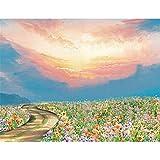 Kit de pintura digital de bricolaje pintura acrílica colorear para adultos y niños de descompresión decoración de paredes manualidadesEl país de las hadas40*50cm Regalo de vacaciones
