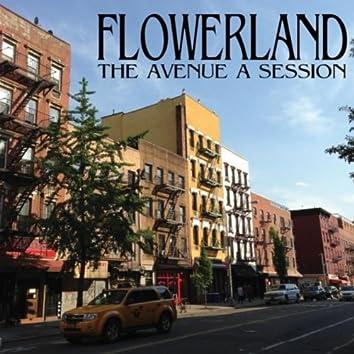 The Avenue A Session
