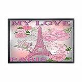 Alfombra de goma rosa de la Torre Eiffel París Francia al aire libre alfombra lavable para puerta de interior, felpudo de bienvenida para la puerta delantera, 50,8 x 32 cm