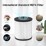 Zoom IMG-2 diki filtro hepa sostituzione del