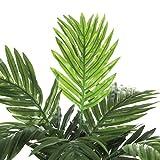 Areca Palme H45 D60 cm, grün im Tontopf D 11.5  cm - 5