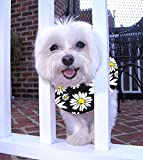 Puppy Bumpers Black Daisies- Made in USA Puppy Bumpers 100% Cotton Stuffed Safety Fence Collar to Keep Your pet Safely on The Right Side of The Fence. (Up to 10')
