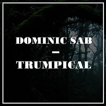 Trumpical
