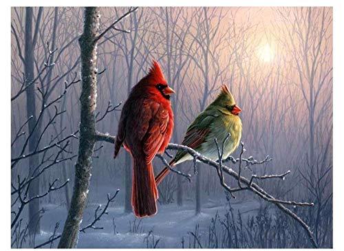 HU0QWPKU Twee vogels op een tak bij zonsondergang, digitale foto op canvas, om zelf olieverfschilderij te maken, voor jou en je huis, model woonkamer 40cmx50cm