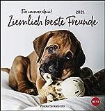 Ziemlich beste Freunde Postkartenkalender 2021 - Kalender mit perforierten Postkarten mit lustigen Sprüchen - zum Aufstellen und Aufhängen - mit Monatskalendarium - Format 16 x 17 cm: Für immer dein
