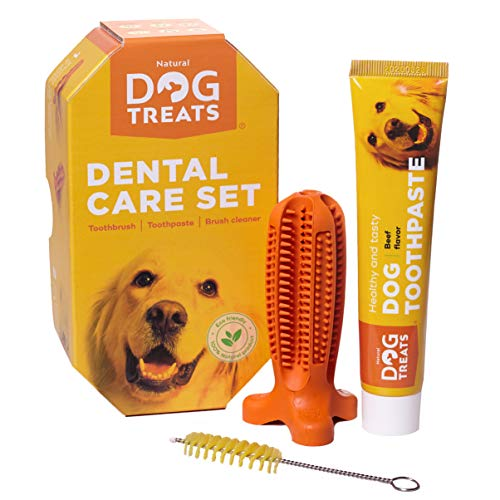 Natural Dog Treats Toothbrush Stick and Toothpaste Beef Flavor Dental Care Cleaning Set, 100% Natural Rubber Chew Toy for Dogs, Size Small