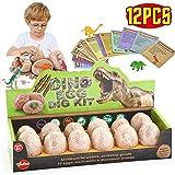 VATOS Huevos de Dinosaurio de Kit de Excavación Paquete de 12,...