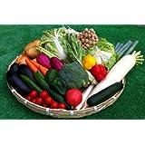 九州産 しっかり使える定番お野菜 10品おまかせ セット ベジップル特選