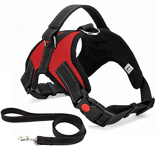 Arnés para perro de lujo, sin tirar, transpirable, ajustable, sin plomo incluida, para perros pequeños, medianos y grandes, ideal para entrenar caminatas (M rojo)
