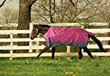 Turnout 1680D Horse Winter Waterproof - Horse Blanket 006 - Size from 69' to 83' (72')