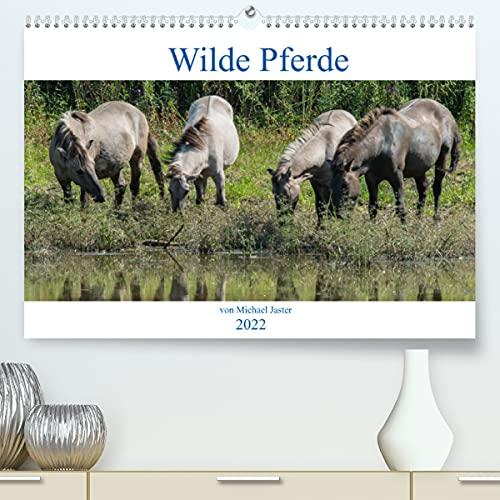 Wilde Pferde von Michael Jaster (Premium, hochwertiger DIN A2 Wandkalender 2021, Kunstdruck in Hochglanz)