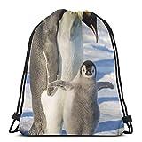 Adultos pingüino Emperador Familia Mochila con cordón Bolsa de Cadena Mochila Deportes atlético Gimnasio Saco Hombres Mujeres niños 36 x 43 cm / 14,2 x 16,9 Pulgadas