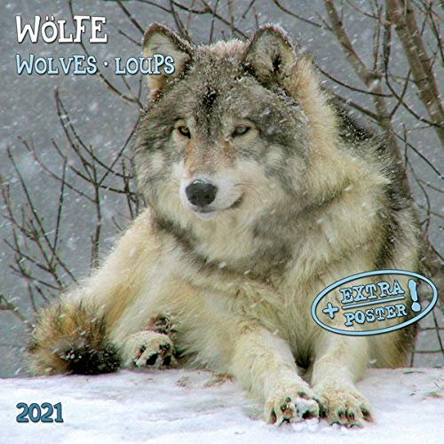 Wolves/Wölfe 2021: Kalender 2021 (Artwork Edition)