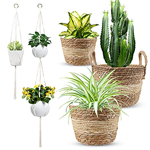 2+1 Tiered Macrame Hanging Planters Indoor with 3pcs Handmade Woven Seagrass Baskets for Boho Home Decor Interior Plant Hangers & Flower Pots, Gift for Plants Lovers