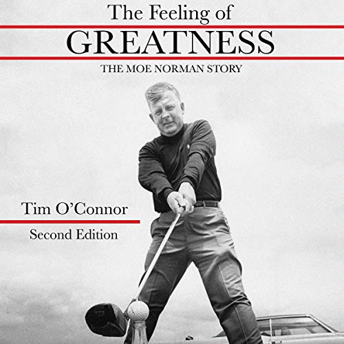 Couverture de The Feeling of Greatness