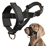 Mayerzon Dog Muzzle for Small Medium Large Dogs Anti Biting Barking Chewing with Soft Padding and Adjustable Loop (L, Black)