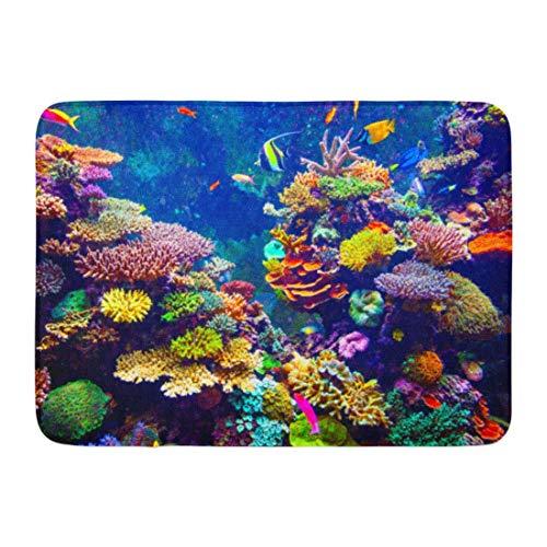 Fußmatten Bad Teppiche Outdoor/Indoor Fußmatte Red Fiji Korallenriff und Tropische Fische im Sonnenlicht Singapur Aquarium Blue Sea Badezimmer Dekor Teppich Badematte