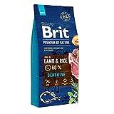 BRIT Premium Croquette Agneau/Riz pour Chien 15 kg