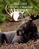 2021- 2022 18 Month Weekly & Monthly Planner July 2021 to December 2022: Moose - Monthly Calendar with U.S./UK/ Canadian/Christian/Jewish/Muslim ... in.-Wildlife Animals For Work Business School