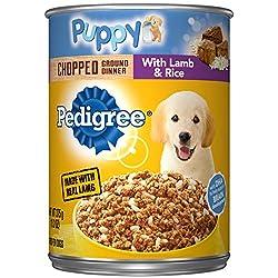 Bestes Welpenfutter für Goldendoodles, damit er groß und stark wird