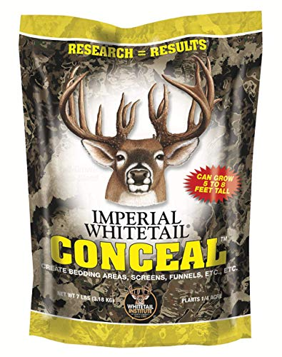 Whitetail Institute Conceal Deer Food Plot Seed for Spring Planting - Provides Tall, Thick Cover for You and/or Your Deer - Create Bedding Areas, Screens, Funnels, Boundaries, Etc, 7 lbs (.25 Acre)