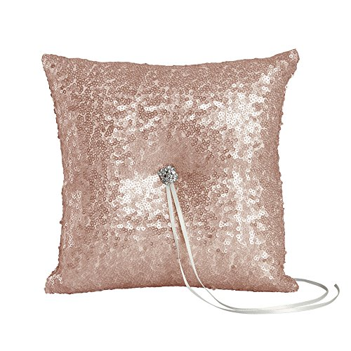 Ivy Lane Design Elsa Matte Sequin Ring Pillow, Blush