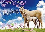 12 Pferde-Einladungen (Set 3) / Geburtstagseinladungen: 12-Set Einladungskarten zum Kindergeburtstag - Einladungen zum Geburtstag für Mädchen und Jungen von EDITION COLIBRI (10780)