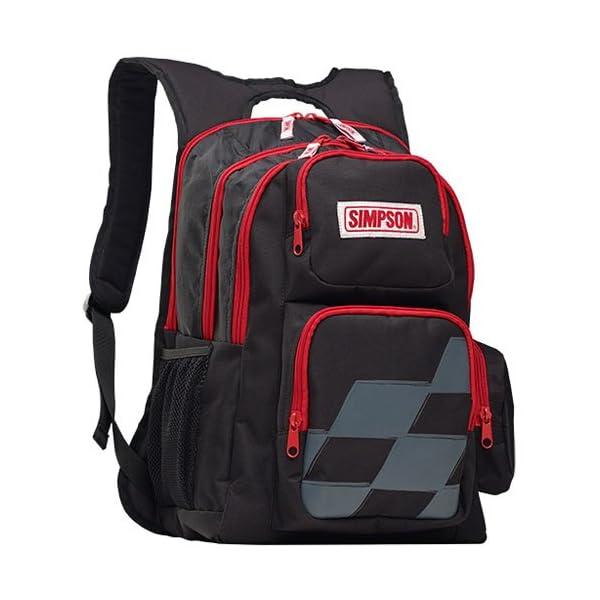 51AOQeAU14L. SS600  - Simpson 23507Pit Back Pack