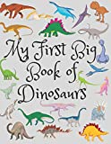 My First Big Book Of Dinosaurs: Spot the Difference Dinosaur, Count The Dinosaurs, The Little Christmas Dinosaurs, Coloring Toy Gifts For Kids Or ... Educational Birthday Party Favors Gifts.