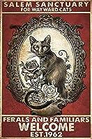 レトロおかしい金属錫サイン8 x 12インチ(20 * 30 cm)子猫 ブリキ看板警告通知パブクラブカフェホームレストラン壁の装飾アートサインポスター(gs-1-61)